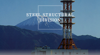 STEEL STRUCTURAL DIVISION